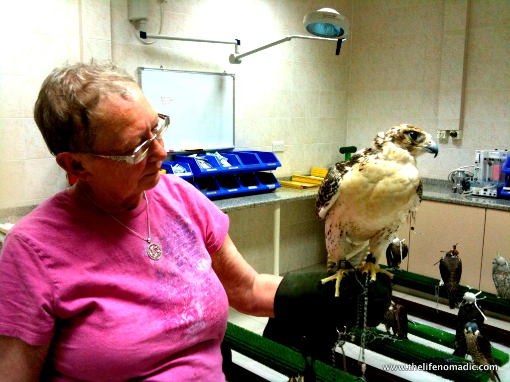 Mom holds the falcon.