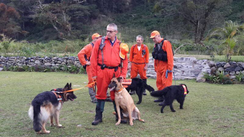 Specially trained dogs aiding the search.