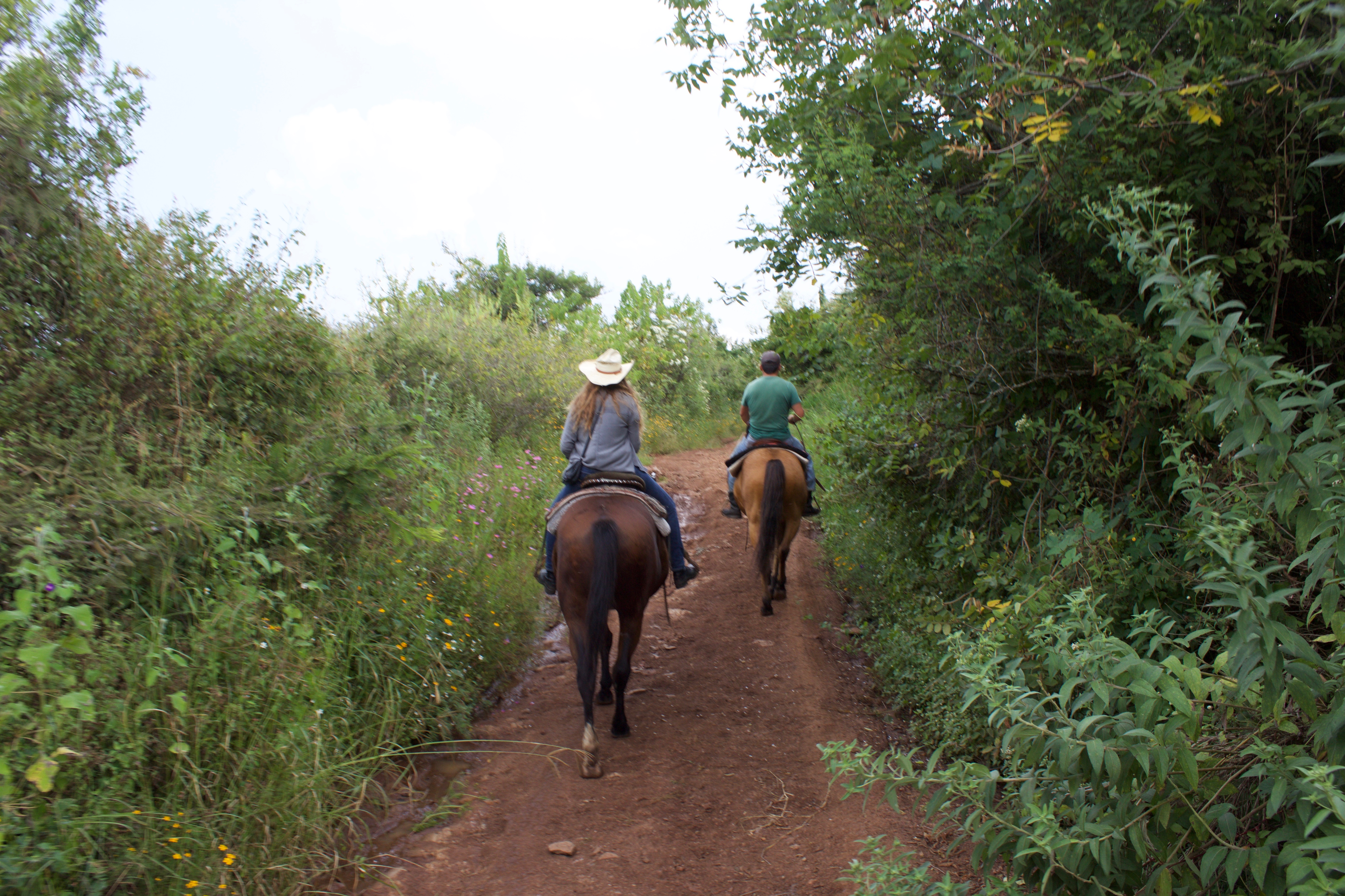Horseback riding in Jalisco.