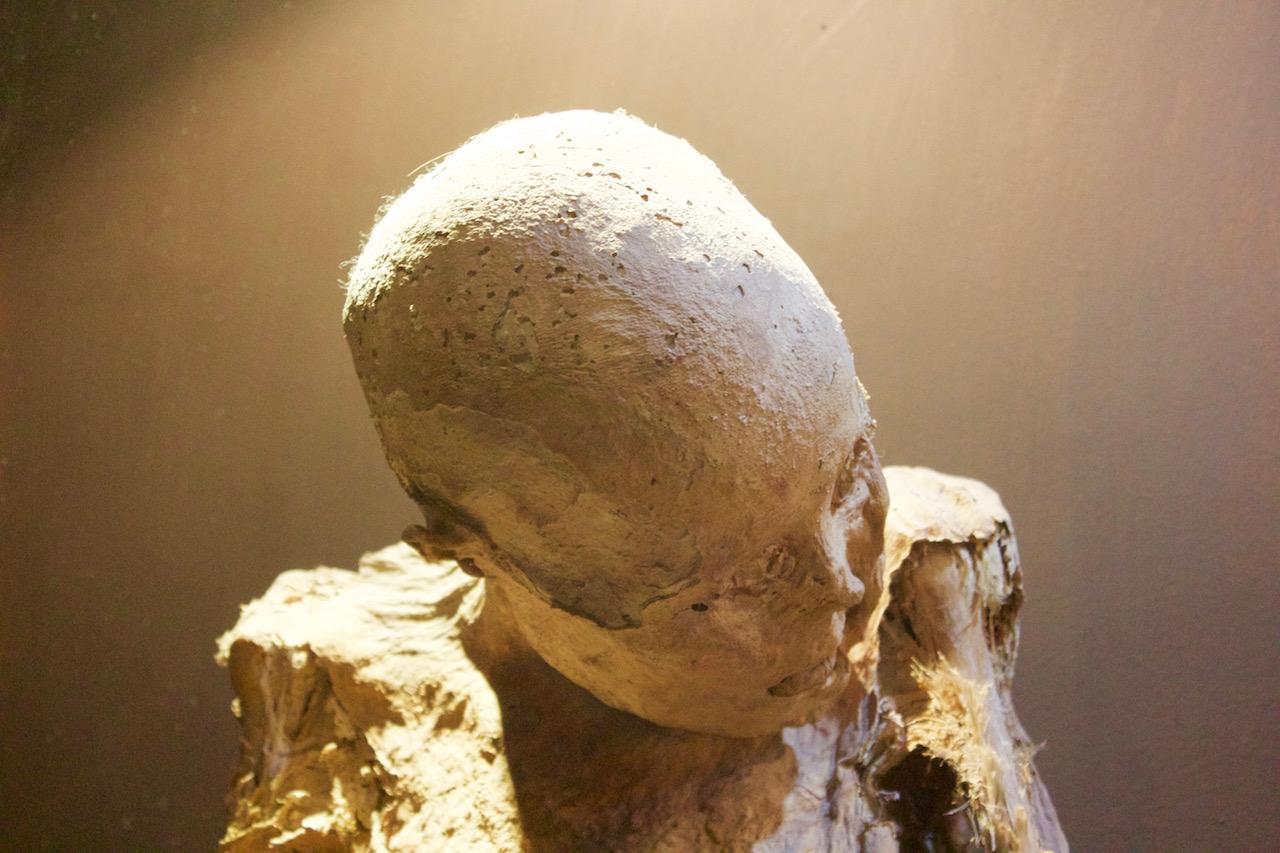 Guanajuato Mummies